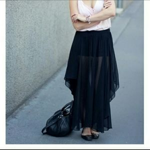 Zara Sheer Maxi Skirt